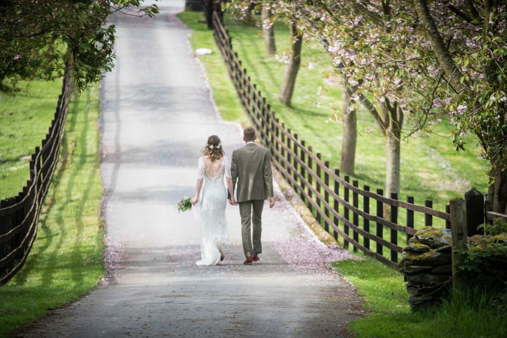 Newly weds hand in hand walking through cherry trees